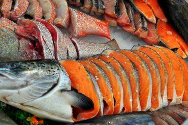 Manfaat ikan salmon untuk ibu hamil
