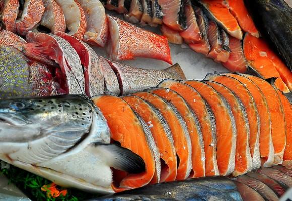 Manfaat Ikan Salmon Untuk Ibu Hamil Portal K9866