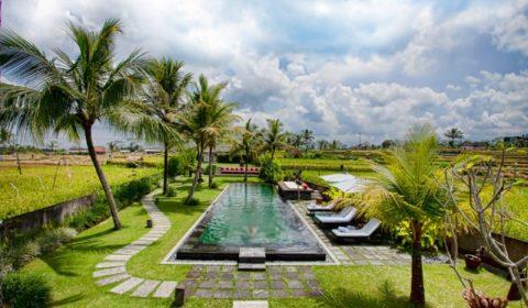 Tempat Wisata Seru Di Ubud Bali Bersama Keluarga