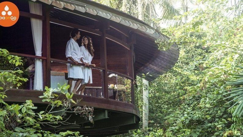 SpaOnGo Solusi Pencarian Tempat Spa Terbaik