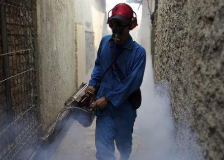Pest Control Singapore Khusus Hama Nyamuk