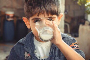 Manfaat Dari Mengonsumsi Susu Untuk Anak 2 Tahun Yang Bagus