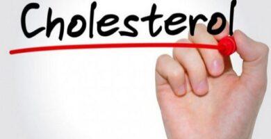 Tips Menurunkan Kadar Kolesterol Dalam Tubuh