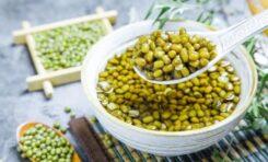 Manfaat Kacang Hijau Untuk Kesehatan Si kecil