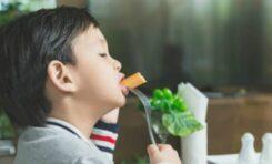 Tiga cara efektif menambah nafsu makan anak